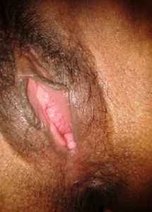 indian pink pussy desi