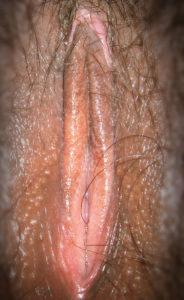 horny pussy bhabhi xxx